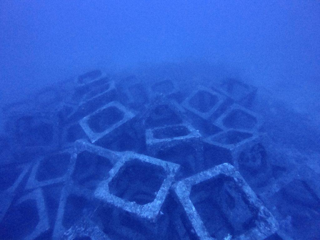 宜野湾沖でダイビング