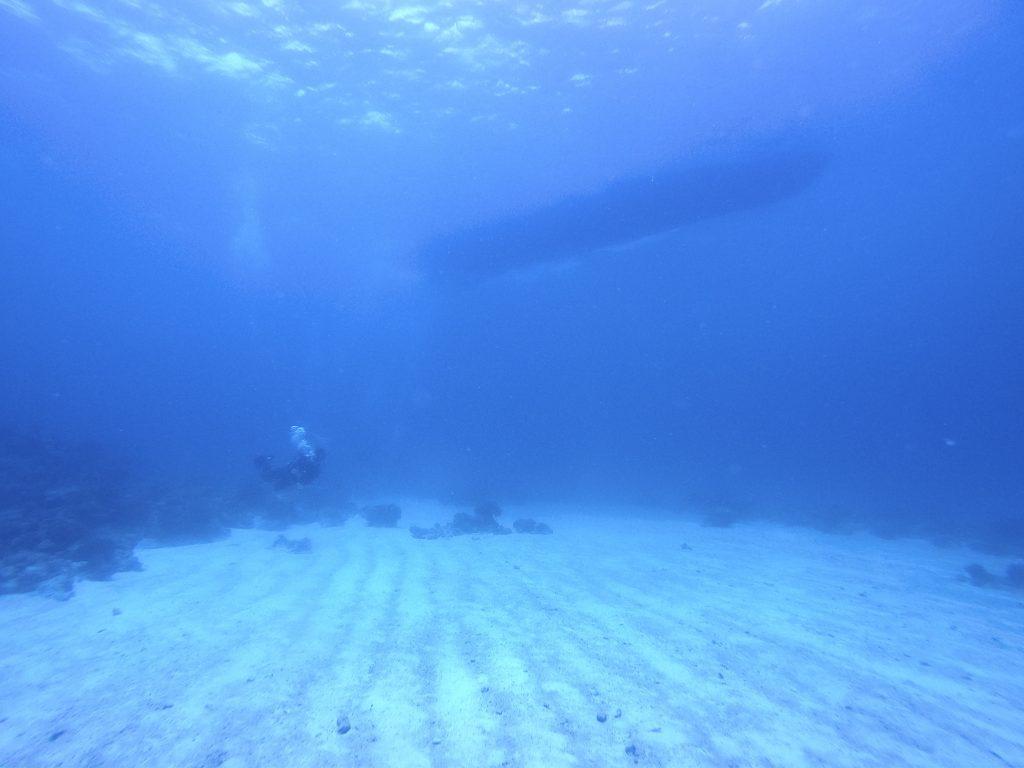クエフ島でダイビング