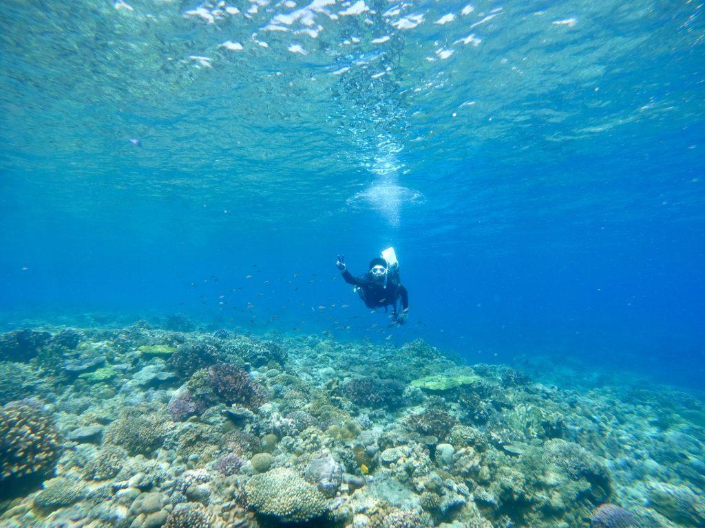 水納島でダイビング
